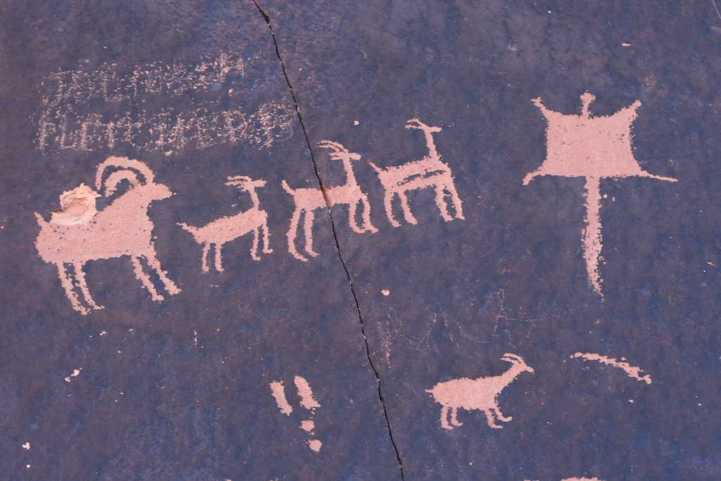 origin of communication from primitive to In this paper i will discuss communication, and the origin and  at the level of  early primitive life, which is what any model of the origin of.