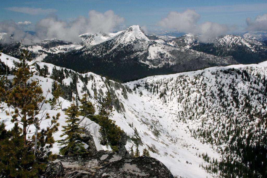Elusive Wolverines Travel Impressive Distances Naturally North Idaho - Elevation locations